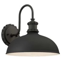 Designed to live in outdoor environments, this stylish sconce is ready to stand up to sunlight beaming down and rainstorms rolling through. Crafted from weather-resistant metal, its frame features a circular backplate and a dramatic curved arm all finished in a neutral tone. Its single light is highlighted by a round bowl shade, which makes this piece the perfect fit for both classic and contemporary al fresco aesthetics. Plus, it comes backed by a one-year warranty.