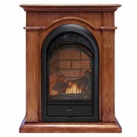 This Karen Propane/Natural Gas Fireplace is an excellent alternative to traditional wood fireplaces. This Karen Propane/Natural Gas Fireplace is designed as a zero clearance firebox which allows for easy and custom built-in installations. It features a stylish arched design with a beautiful ceramic brick liner complete with dancing yellow flames and hand-painted logs. These realistic logs and burner technology bring the look and feel of a real fire to your home. This economical, efficient Karen...