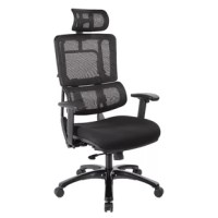Lavish up your daily work routine with this Pierro Contemporary Ergonomic Mesh Executive Chair with a breathable vertical mesh back and adjustable lumbar support. You will feel both relaxed and more motivated in the workplace. Show off your professional style with a polished base and dual wheel carpet casters for accessible mobility. Slick adjustable features and an affordable price make this an intuitive choice for any office.