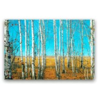 This 'The Naked Forest of Birch Trees' Photographic Print on Canvas is made to last and is a gorgeous piece to add a piece of perfection to fit your fashion. To hang in your office, your home and your place of business.