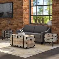 Bring a cohesive look to your favorite seating arrangement with this three-piece table set, showcasing a coffee table and two end tables. Each piece in this set is inspired by trunk designs and is crafted from solid pine, manufactured wood, and metal. A rustic gray and brown finish gives this set a solid natural finish, while metal and nailhead trim outfit each piece in an industrial look. Each end table stands on four feet, while the coffee table is supported by a catered design. One end table...