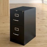 Cut the clutter and keep those important documents safe and organized with this essential filing cabinet. Made in North America from commercial-grade steel with a solid finish, this storage unit features two spacious cabinets with ball bearing glides for smooth open and shut. Plus, it includes a removable lock for keeping your private papers secure.