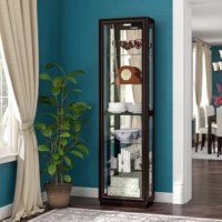Give special-occasion serveware, family heirlooms, and treasured tchotchkes the showroom they deserve with this lovely curio cabinet. Built from hardwood solids and veneers, this piece features a raised pedestal base and framed molding for a touch of flair, while its dark wood frame brings warmth to your decor. Inside, five adjustable glass shelves, along with a bottom shelf, offer the perfect stages for your favorite possessions; built-in interior lighting gives them a spotlight. This curio...