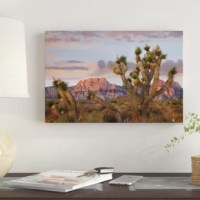This artwork is crafted with 100% cotton artist-grade canvas, professionally hand-stretched and stapled over pine-wood bars in gallery wrap style - a method utilized by artists to present artwork in galleries. Fade-resistant archival inks guarantee perfect color reproduction that remains vibrant for decades even when exposed to strong light. Add brilliance in color and exceptional detail to your space with the contemporary and uncompromising style. Ready to be displayed right out of the box...