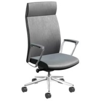 Clean lines and an uncluttered aesthetic. This combination makes the item adaptable to almost any requirement. It blends elegance with function, featuring its double needle stitching that provides strength and durability with a dynamic ergonomic back suspension system that's integrated into the molded back. Simply put, the chair provides a pristine, modern aesthetic for the executive that desires performance and a polished appearance. It can fit almost any environment, whether it's the...