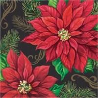 This Poinsettia 6.5