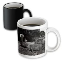 This is a transforming mug. Why drink out of an ordinary mug when a custom printed mug is so much cooler? This ceramic mug is lead-free, microwave safe and FDA approved. The image is printed on both sides. Hand washing is recommended.