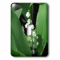 This toggle light switch is made of durable scratch resistant metal that will not fade, chip or peel. Featuring a high gloss finish, along with matching screws makes this cover the perfect finishing touch.