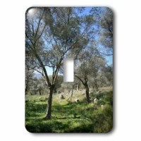 This Turkish Olive 1-Gang Toggle Light Switch Wall Plate is made of durable scratch resistant metal that will not fade, chip or peel. Featuring a high gloss finish, along with matching screws makes this cover the perfect finishing touch.