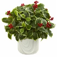 This luscious, real to the touch green leaves of this artificial plant are accompanied by an ample amount of plump red berries. It comes nestled in a marble finish vase, making it a perfect centerpiece for your formal dining room table. Place it next to your porcelain tea kettle or glass pitcher for a natural, elegant setup.