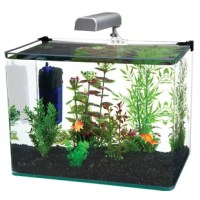 This aquarium kit includes a 5-gallon tank, cascade 300 internal filter, LED light and a hinge-style plastic lid to make setup as easy as possible. This contemporary glass tank features a unique bent design with frameless construction and is made with the highest clarity glass, which beautifully reflects the light and colors within the aquarium. For even more strength and durability, this aquarium utilizes a 3-piece construction with seamless rounded front corners. The high-quality internal...
