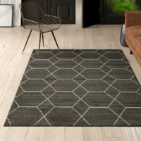 Floors are often forgotten when it comes to decorating your home, but that's when rugs come in handy! A rug adds an extra layer of depth and personal style to your space. They can even act as a focal point in an entry way, bedroom, or beneath a seating arrangement. This one for example, features a geometric pattern, perfect for a contemporary aesthetic. It is machine made in Turkey from polypropylene, in a dark gray hue, with a 0.5'' pile height and should also should be used with a rug pad....