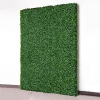 Attention customers: We want to inform you that this product is 8 pieces of 20x20 inch hedge panels (four pieces when easily zip-tied together makes 40x40inch). The reason we provide individual pieces is to assure the product is not damaged during transportation due to folding or compression. In the end, we believe that this method produces the best results in preserving the beautiful product you are looking for. If you are looking for a 40x40 inch piece that is shipped as a whole piece, do not...