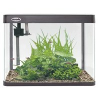 For a simple and efficient aquarium that's easy to set up and maintain, look no further than the new kit. This aquarium kit includes a 12 gallon (45.4 liters) crystal clear glass aquarium kit with integrated lid and 54 bulbs LED light. Also included are a water pump and drip filtration system. This kit is ideal for both freshwater and saltwater applications.