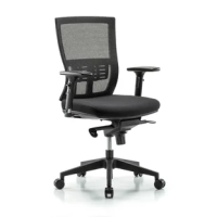 This mesh Office Chair adjusts to fit most office requirements. Adjustable arm rests are in 2-way adjustment or 3 adjustments. Additional ergonomic benefits include locking asynchronous mechanism, mesh back with adjustable lumbar support, and 360°degree rotation. These Office Chairs come with a highly durable leg nylon reinforced fiberglass base with black, rolling, non-marring nylon casters and foam cushioning covered with durable nylon mesh fabric.