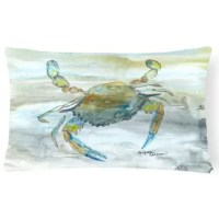 This indoor or outdoor pillow from heavyweight canvas material. 100% Polyester fabric pillow with a pillow form. Fade resistant. Machine washable.