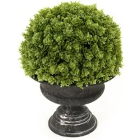 This plant brings vintage, contemporary, and transitional styles. It is suitable for any decor.