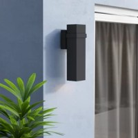 Starns 2-Light LED Outdoor Armed Sconce