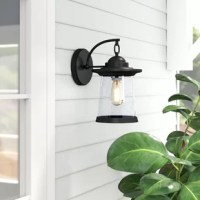 This 1-light outdoor wall sconce features a textured that will complement many transitional decors. The clear seedy glass shade allows the light to bounce in different ways and creates a warm welcoming glow to the outside of your home.