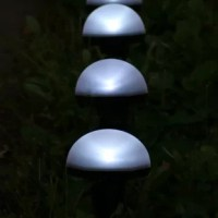 Enhance any landscape with this pathway light. These lights and solar panel are connected, so the set stays together, and the pieces won't easily get lost. No need to plug in these lights as they utilize the power of the sun to illuminate outdoor spaces. These are ideal for lighting up pathways, walkway entries, driveways and anywhere else a little light is needed when walking in the dark. Plus, these lights can also be used to enhance the borders between lawns and gardens to add curb appeal to...