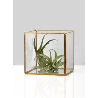 With its simple cube shape, this rich gold, iron lantern with clear glass panels, has a versatile look that will work in modern and classic decor styles. It is for an escort card table or cocktail hour bar.