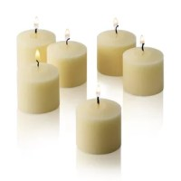 Add elegance and sophistication to your home with the Light In the Dark votive candles (Set of 72). These candles are perfect for adding charm to a formal event or to just uplift the look of your home for a casual setting. With a burn time of 10 hours, each candle will last you for a long time. This set contains 72 vanilla-scented votive candles. These tiny Light In The Dark Votive Candles are white in color. These scented candles have a French Vanilla scent, which is extremely pleasant and...
