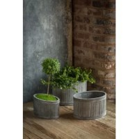 They like to imagine these zinc containers nestled in the scene of a rustic greenhouse while nimble-fingered botanist prunes and plucks away. The ribbed design and coarse texture of the metalwork give the planters an antique and industrial look.