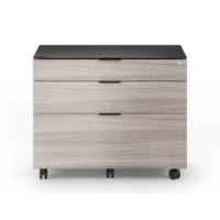 This cabinet a new standard in modern office design and functionality. Whether for a large or more compact office, delivers on a variety of desk and storage options, and a host of innovative features engineered to create an organized, efficient, and inspiring workspace.