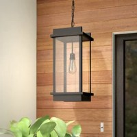 Illuminate a patio or gazebo in style with this 1-Light . A contemporary geometric frame in black finish aluminum is softened with a vintage-era bulb surrounded by romantic seedy glass, creating an inspiring design.