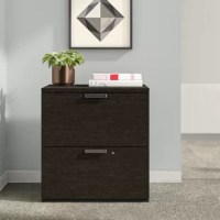 Filing cabinets are the backbone of any office, and this vertical design is no exception. Keeping important (and not-so-important) files and information archived, this two-drawer manufactured wood cabinet showcases a crisp and clean look with a neutral finish, perfect for modern offices. Serving double-duty as a seat, its upholstered top helps keep coworkers comfy during a quick touch-base. Plus, it arrives backed by a 10-year commercial warranty. Assembly is required.