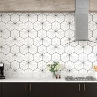 The field tile features a bright white color tone accented with thin muted black lines extending across the tile. This mesmerizing tile pattern is sure to liven up your space and give it a modern spin. Its geometric shape is unique yet simplistic enough to integrate into any design, ranging from traditional style renovations to modern home projects. The medium-sheen glazed surface offers a sleek look that adds extra character to this unique artistic tile. Its impervious and frost resistant...