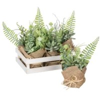 Faux doesn't mean it's faux-pas - this 6 Piece Potted Foliage Desktop Plant in Tray Set full of botanicals bring the natural beauty of the outdoors, inside for display. Smaller in stature, this is a creative way to go green without the time-consuming effort.