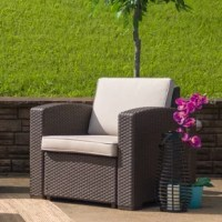 Create an amazing outdoor space with this comfortable and stylish chocolate brown patio chair. The durable resin frame offers a stylish appearance which replicates rattan. Deep seating enhances the comfort level. Beige all-weather cushions will hold up all season long. Clean up spills with a water-based cleaner or the cushions are zipper removable for washing purposes when spot cleaning just isn't enough. Curl up with your latest read, or just relax and enjoy the outdoors with family and...