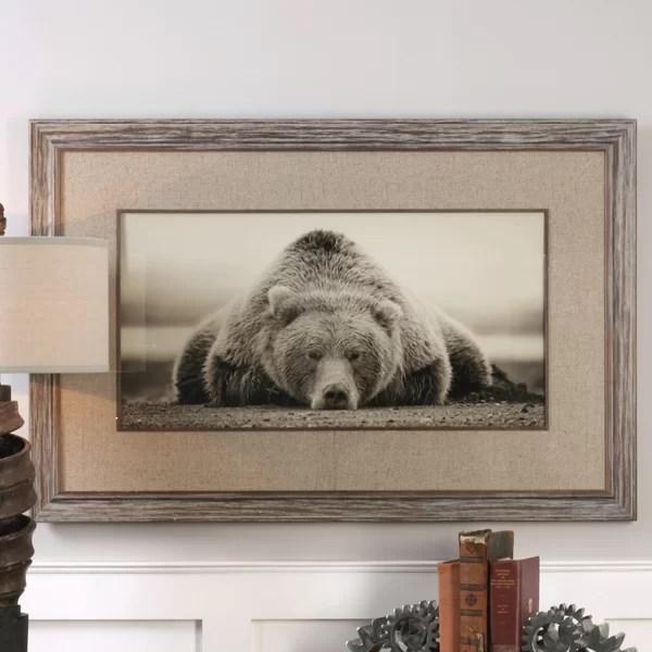 Deep Sleep Bear Framed Photographic Print Amp Reviews