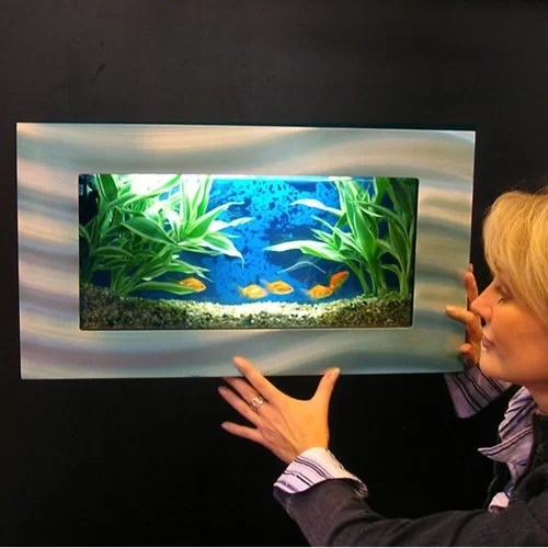 Vandue Corporation Aussie 2 5 Gallon Wall Mounted Aquarium