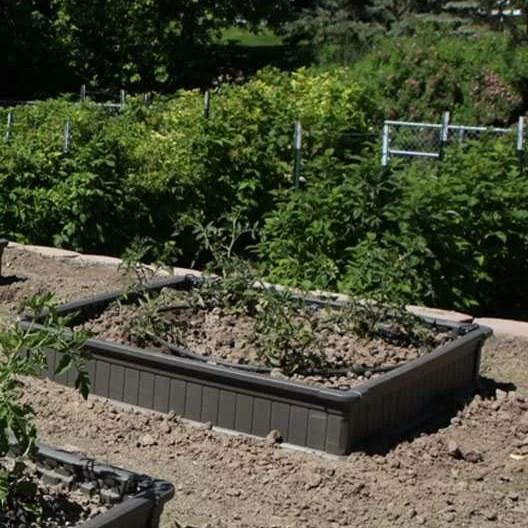 Lifetime Raised Garden