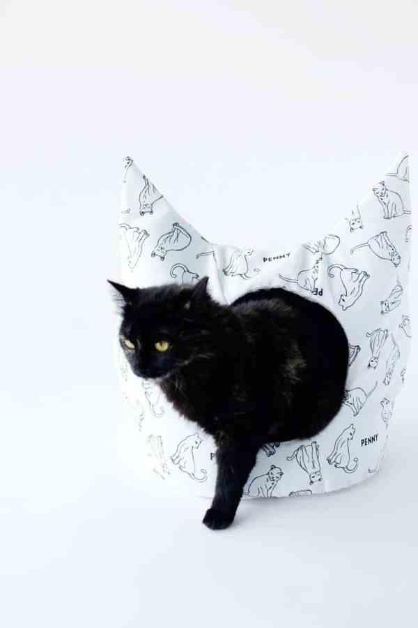 free cat tutorial # 2