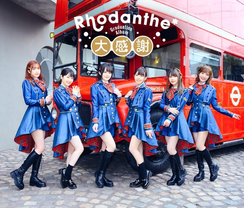 Rhodanthe - Daikansha