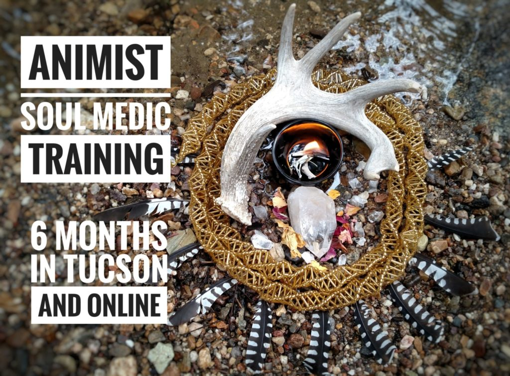 SOUL MEDIC Animist Practitioner Training 6 months Online with Quynn     Do you know that there is a sacred Web of Life  and that you are a part of  it  You are an Animist