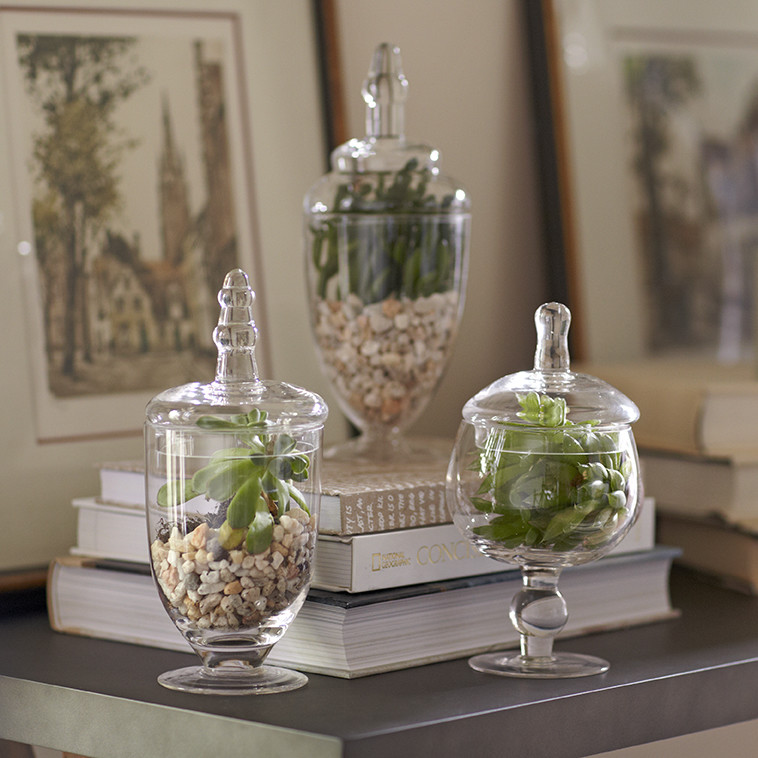 Best Pottery Barn Classic Glass Apothecary Jars Decor Look Alikes This Month