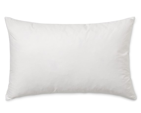 Best Decorative Pillow Inserts Williams Sonoma This Month