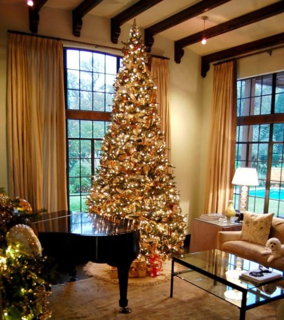 Best Christmas Tree Decorating Ideas Pictures The Wondrous Pics This Month