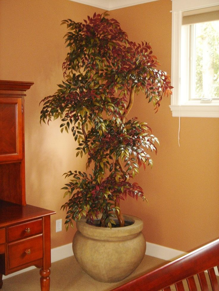 Best 12 Best Home Decor Artificial Trees Plants Images On This Month
