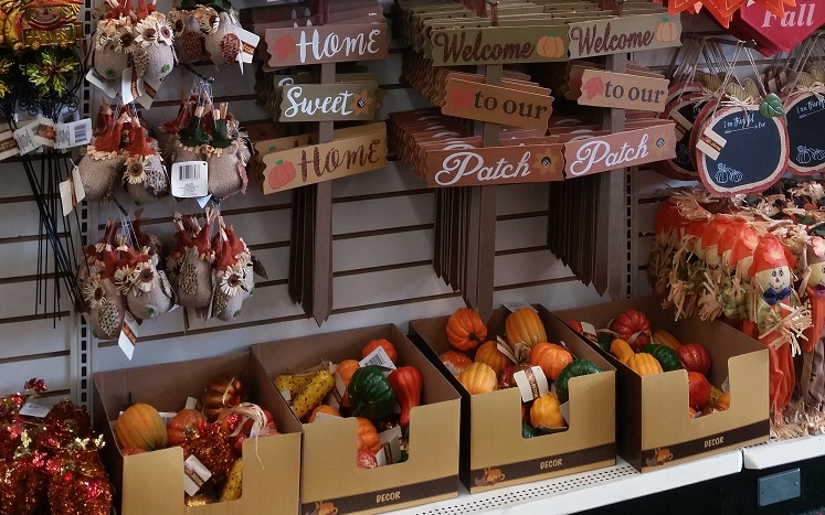 Best Fall Decorating Dollar Tree Style Get More For Less This Month