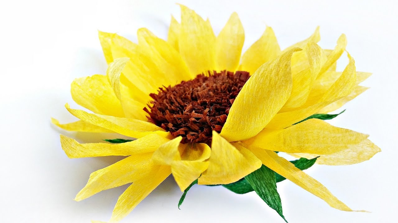 Best Diy Tissue Paper Sunflower Flower For Wall Backdrop This Month
