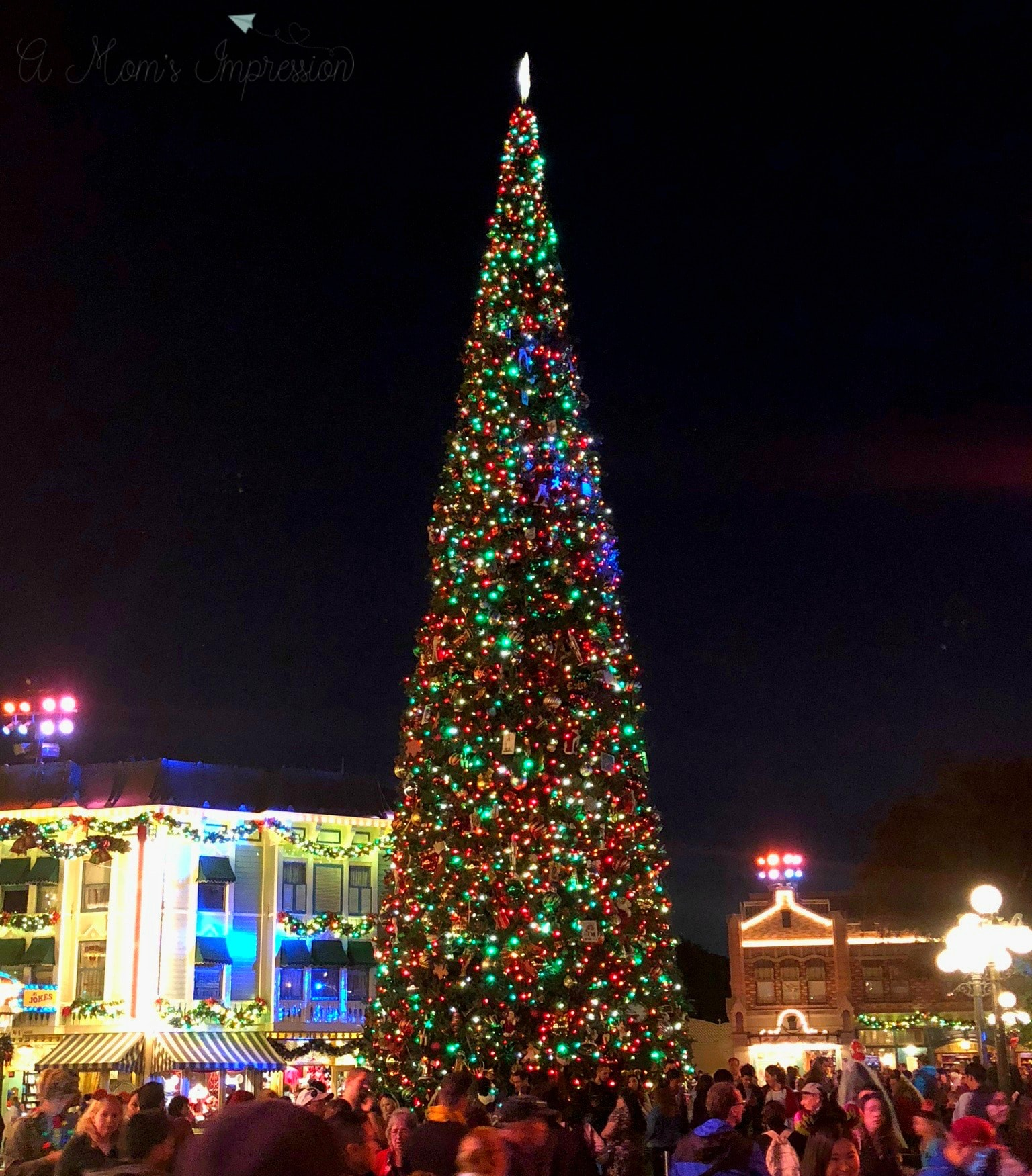 Best Experience Amazing Disneyland Christmas Decorations This Month