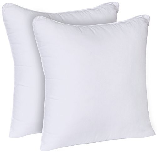 Best Utopia Bedding Decorative Pillow Insert 2 Pack White This Month