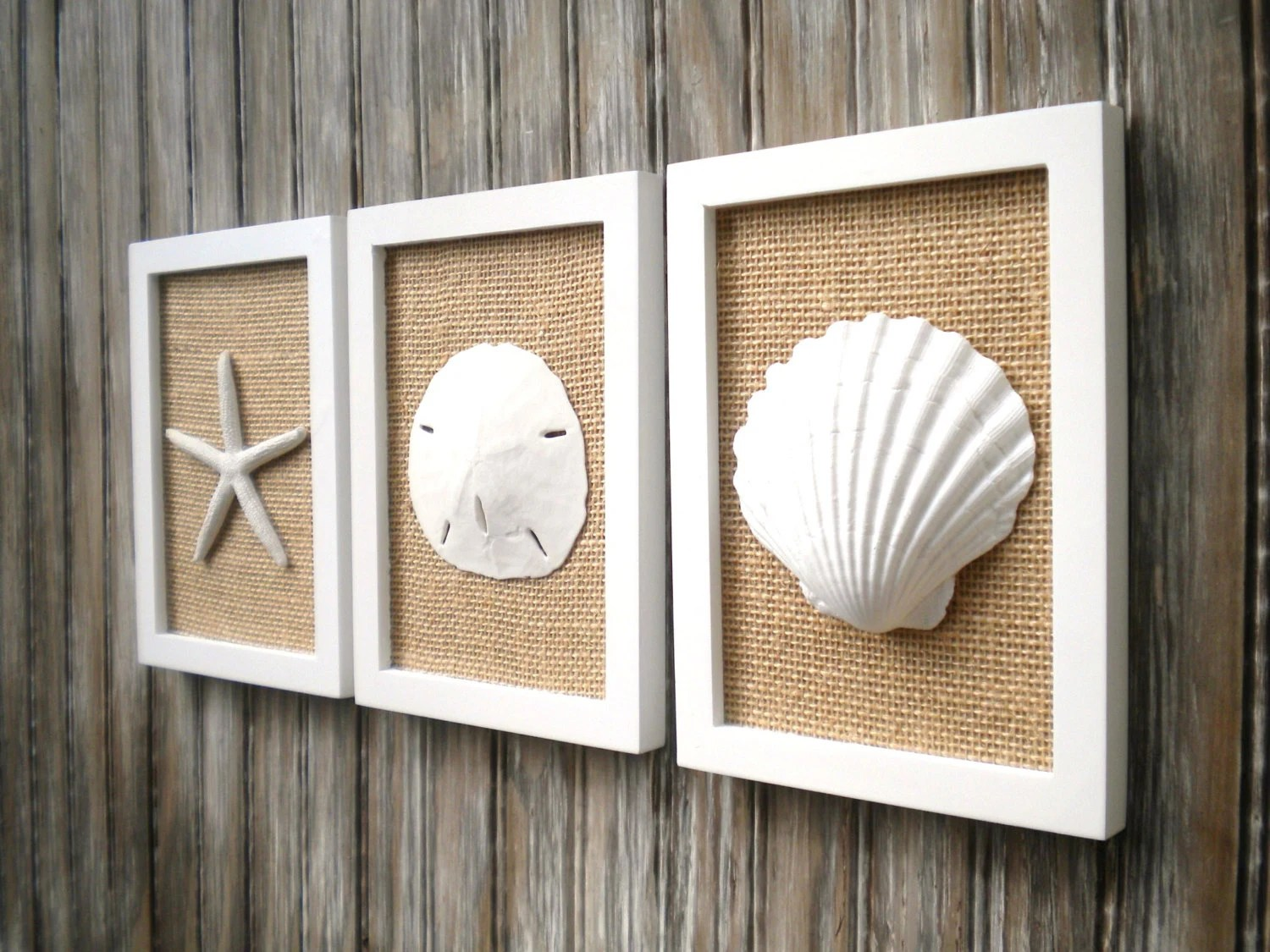 Best Cottage Chic Set Of Beach Decor Wall Art Sea Shell Home This Month