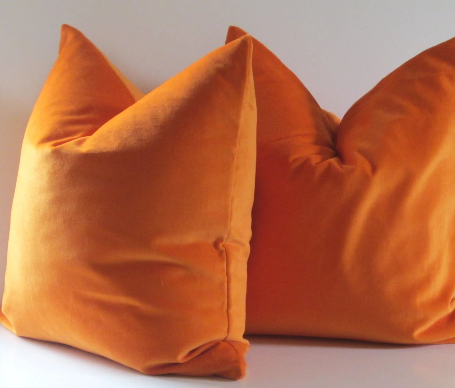 Best Set Of Two Decorative Pillows 20 Inch Designer Quality This Month