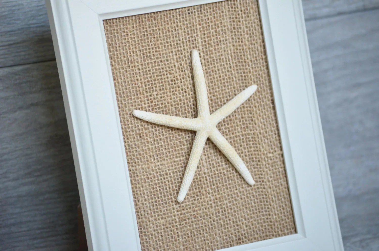 Best Starfish Home Decor Wall Art Beach Home Decor By This Month